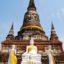 Khao Sok und Mangroventour: Zwei grüne Tipps für den Thailand Urlaub